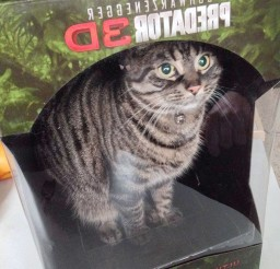 1024x1365px Predator 3d Cat Edition Cat Picture Picture in Funny Cat Pictures