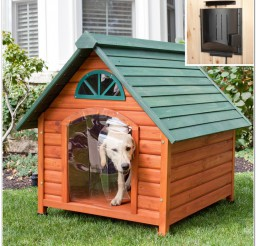 816x816px Dog House With Heater Picture Inspirations Picture in Dog