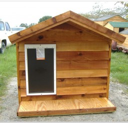 816x616px Heated Dog Houses For Sale Picture Ideas Picture in Dog