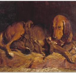 816x633px Bloodhound And Pups Exhibited 1839 By Charles Landseer 1799 1879 Picture in Dog