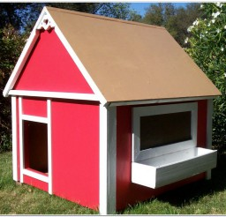 816x740px Wonderful Insulated Dog Houses Photo Inspirations Picture in Dog