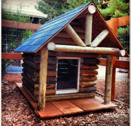 816x816px Wonderful Top Log Cabin Dog House Picture Ideas Picture in Dog
